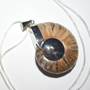 Jewelry - Real Ammonite Shell Fossil Silver Necklace